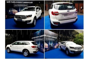 FORD EVEREST AMBIENTE 4X4 2.2L MT - 2017 - 2018-1